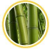 tejido bambu