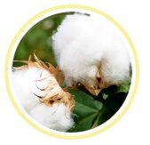 fundas de almohada de algodon