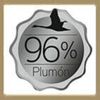 logo 96% plumon