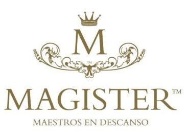 colchones y canapes magister